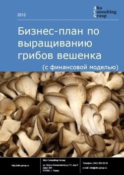 Бизнес-план по выращиванию грибов вешенка (с финансовой моделью)