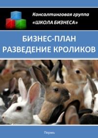 Бизнес план разведение кроликов