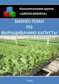 Бизнес план по выращиванию капусты